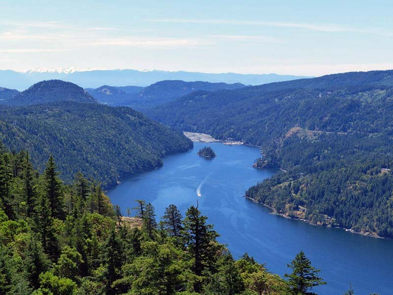 Top Hiking Trails in Victoria BC
