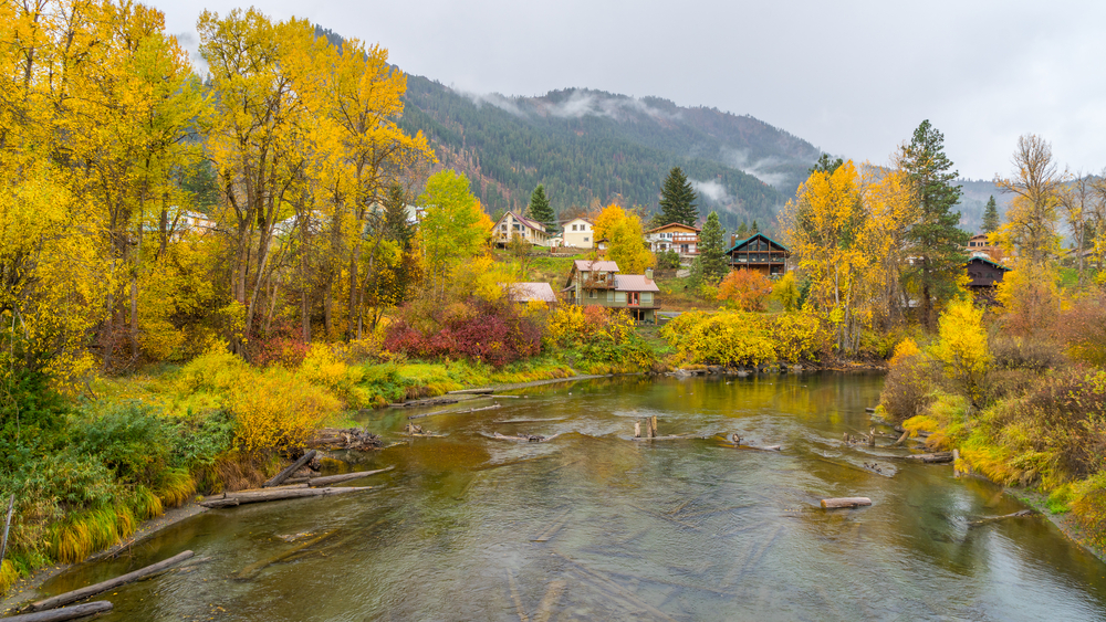 Fall Activities and Virtual Events in the Northwest